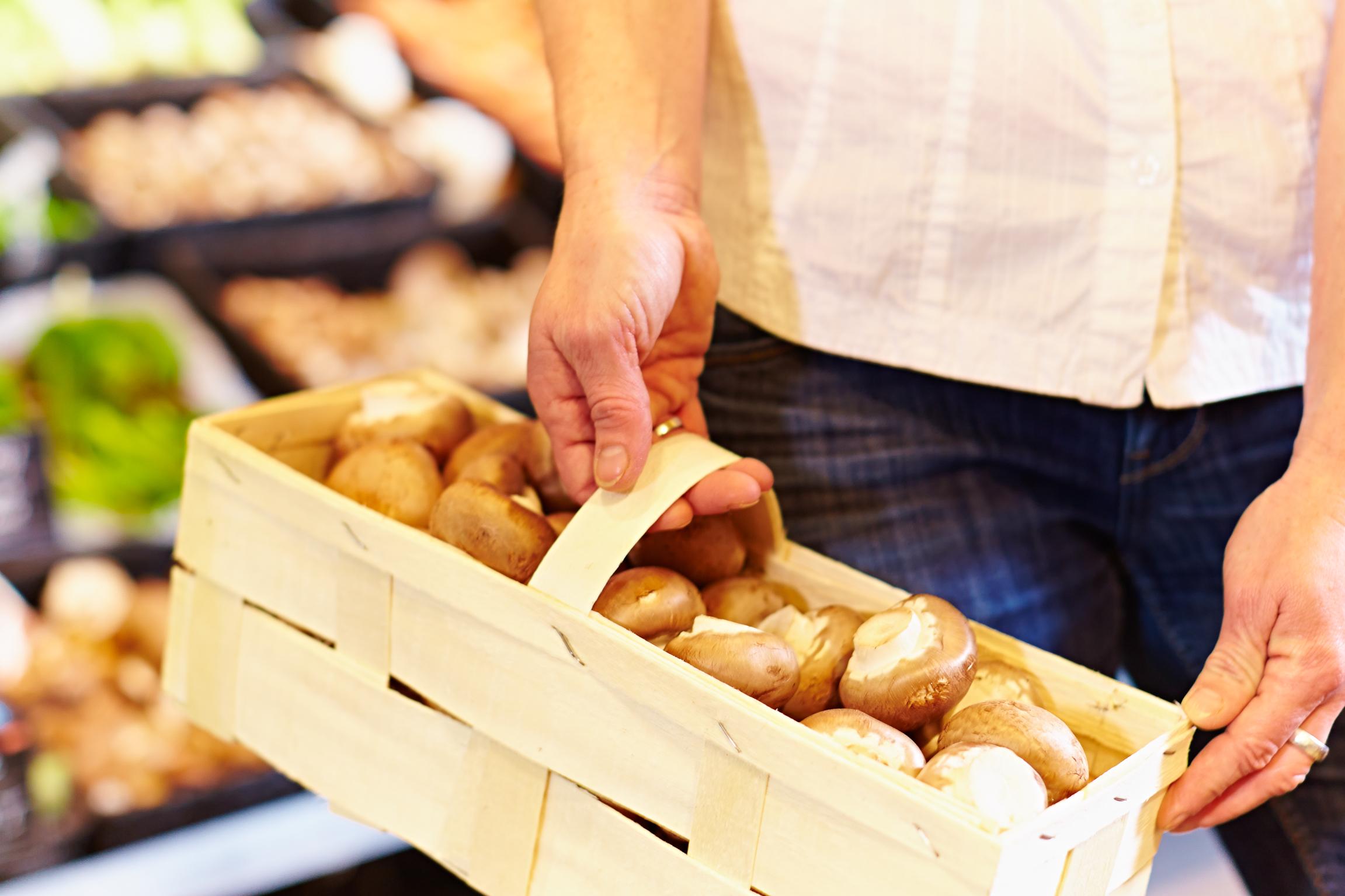Leckere Pilze – damit der Darm gesund bleibt