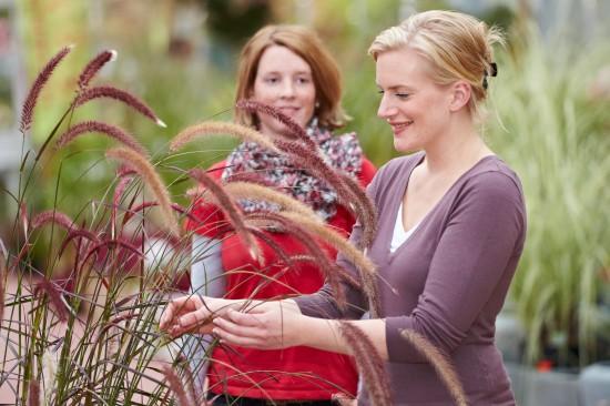 Pflanzen zum Kuscheln