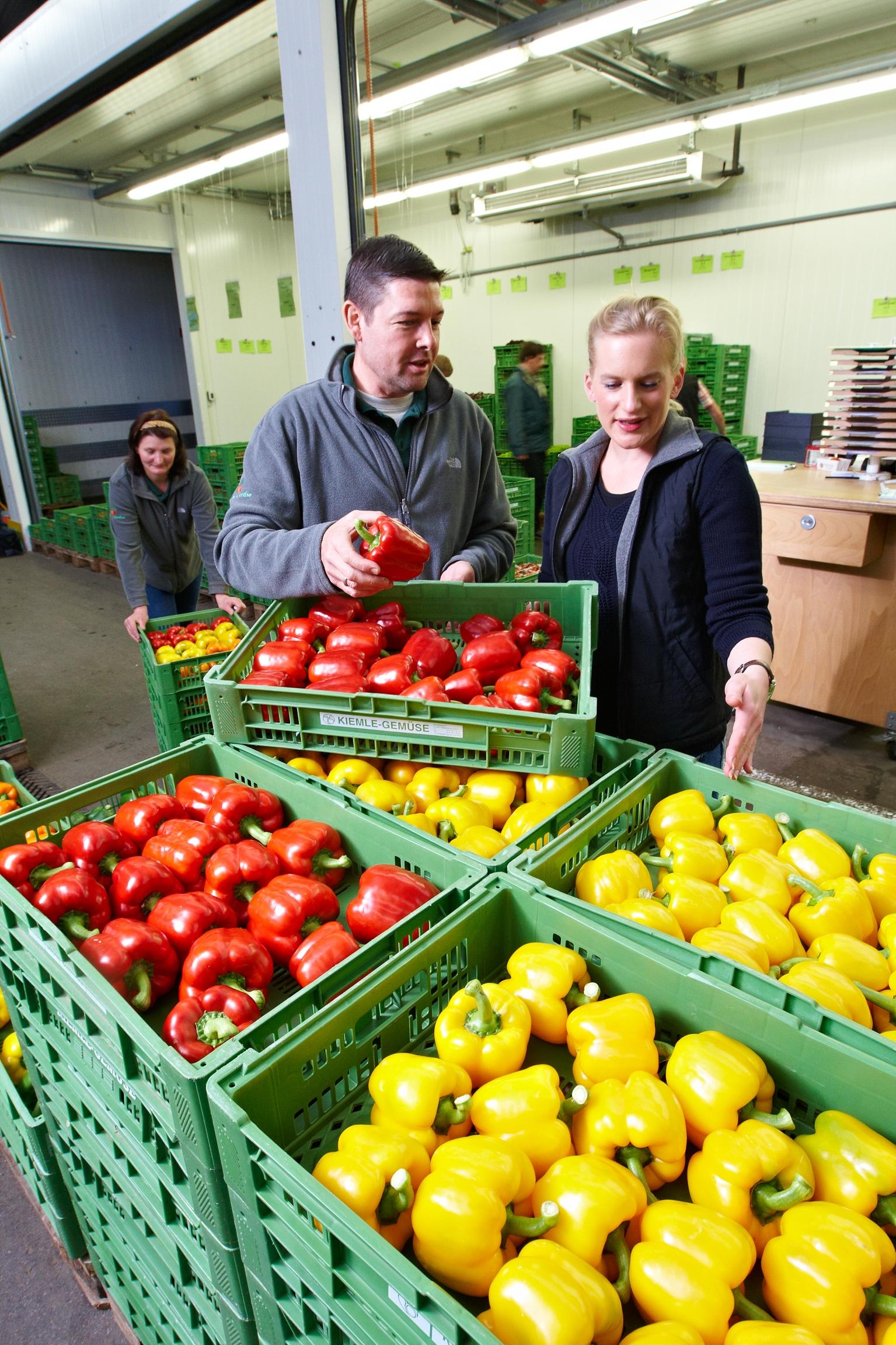 Wohlschmeckendes Gemüse aus der Region