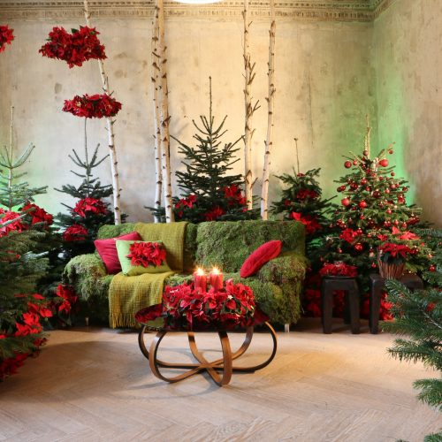 """""""Once Upon a Star"""": Märchen-Arrangements mit dem Weihnachtsstern lassen Räume in moderner weihnachtlicher Pracht erstrahlen"""