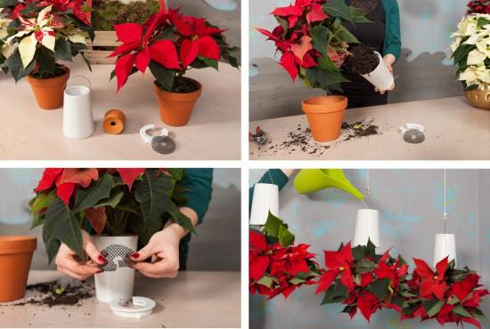 Märchenhafte Dekorationsideen mit dem Weihnachtsstern