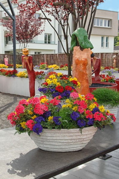 Hokuspokus Blütenzauber