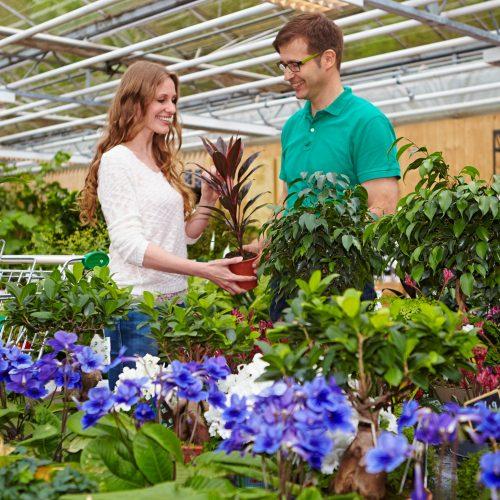 Ausbildung verbindet Gärtnerwissen und Verkaufskompetenz