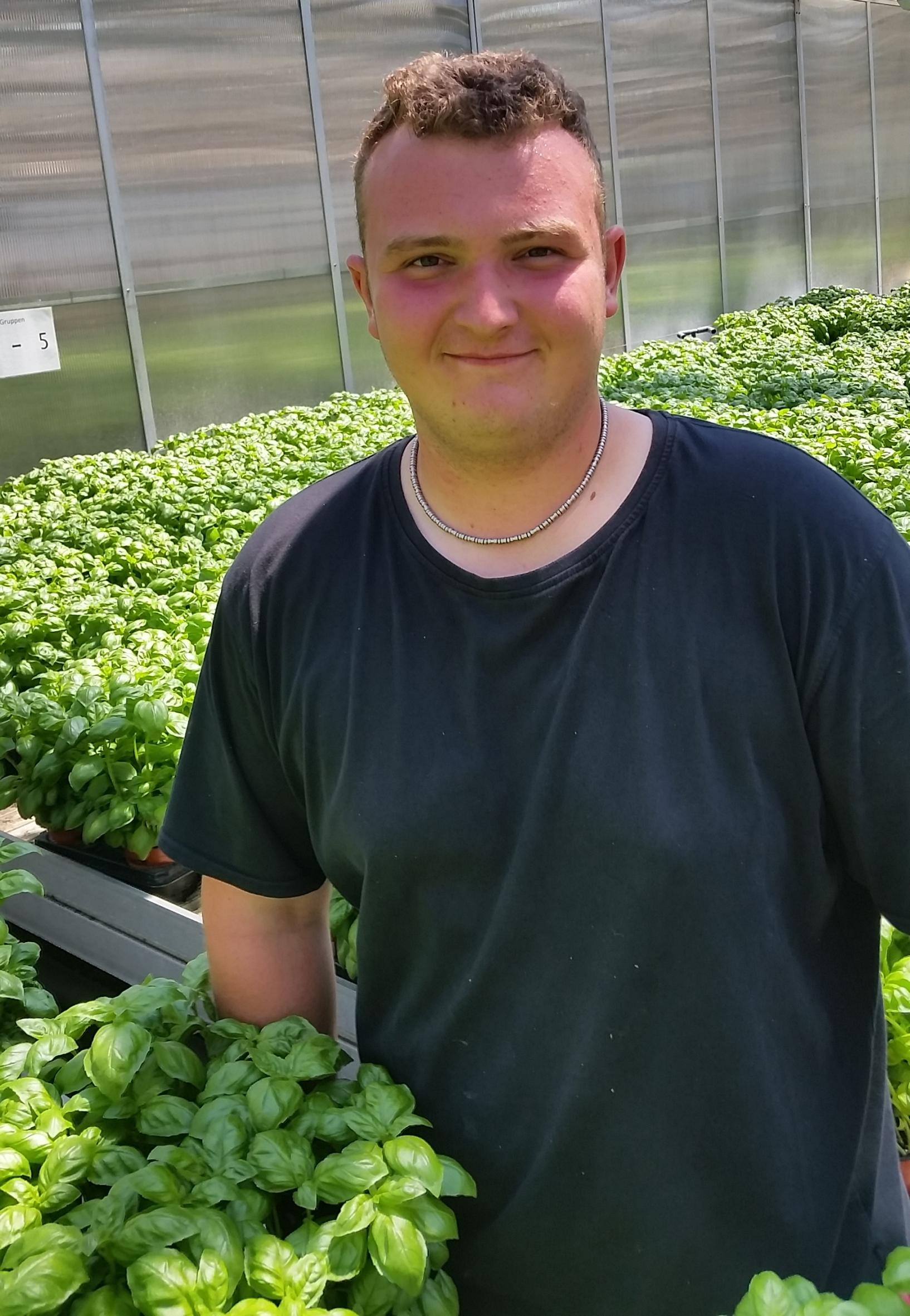 Täglich darf geerntet werden: Ein Auszubildender im Gemüsebau erlebt gesunde Vielfalt