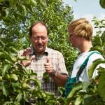Gärtner im Obstbau arbeiten im Früchteparadies