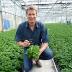 Fressen statt spritzen: Nützlinge erleichtern Gärtnern die Arbeit