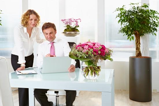 Motivation und Gesundheit am Arbeitsplatz durch Pflanzen