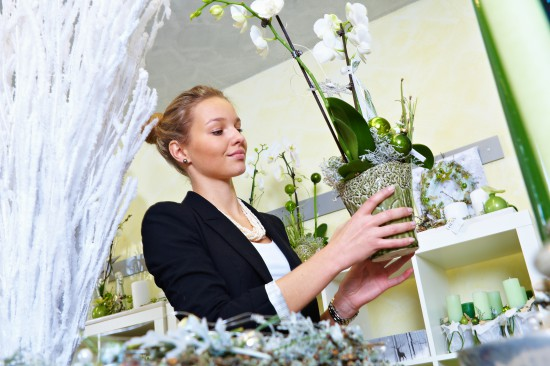 Dekorierte Pflanzen sorgen für Atmosphäre in der Adventszeit