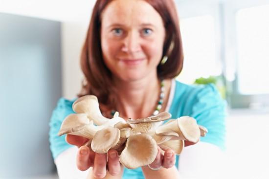 Vom Zunderschwamm zum Austernpilz - heilsame Pilze gestern und heute