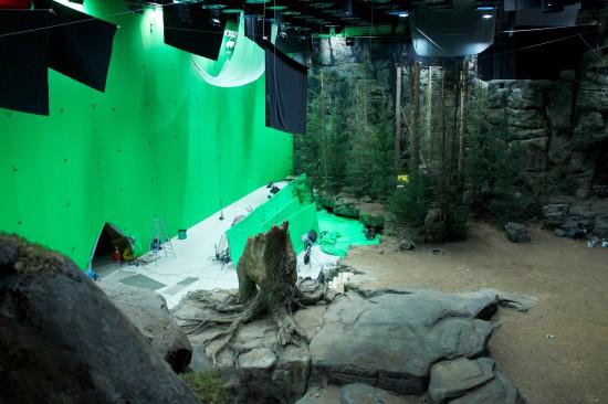 Klappe und Schnitt: Grünes Wissen trifft Filmkulissen