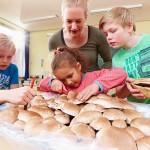 Staunen über das Wachstum von Pilzen – Aktion Schulchampignons