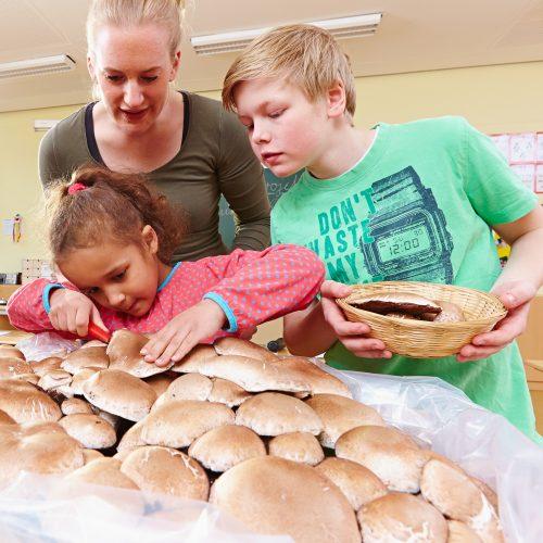 Staunen über das Wachstum von Pilzen - Aktion Schulchampignons