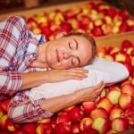 Winterschlaf hält heimische Äpfel lange frisch