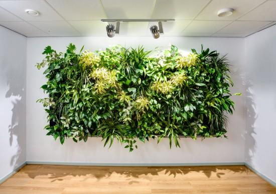 Lebendige Gemälde und begrünte Wände sind im Trend
