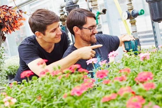 Was macht eigentlich ein Profi-Gärtner im Sommer?