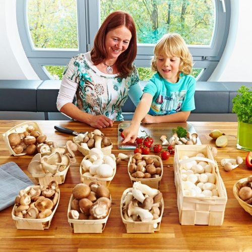 Pilze - in fast allen Winkeln der Erde beliebt