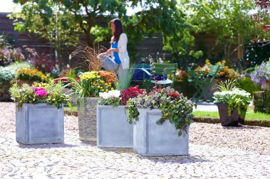 Den Herbst gestalten: Leuchtende Kostbarkeiten im Pflanzkübel