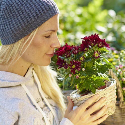 Mit diesen Pflanzen lässt sich ein Oktoberfest vorm Fenster feiern
