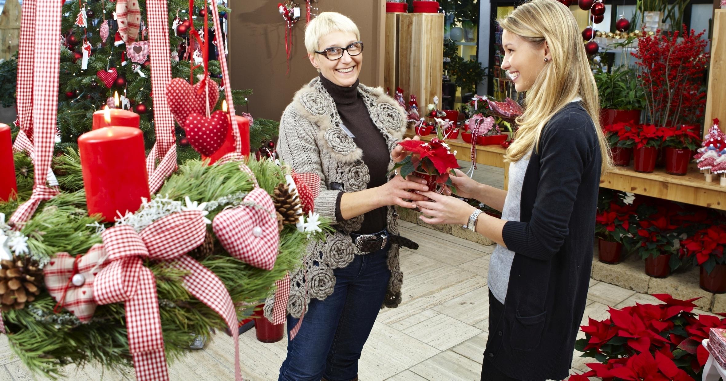 Es funkelt und glitzert im Gartenfachhandel – bald ist Advent!