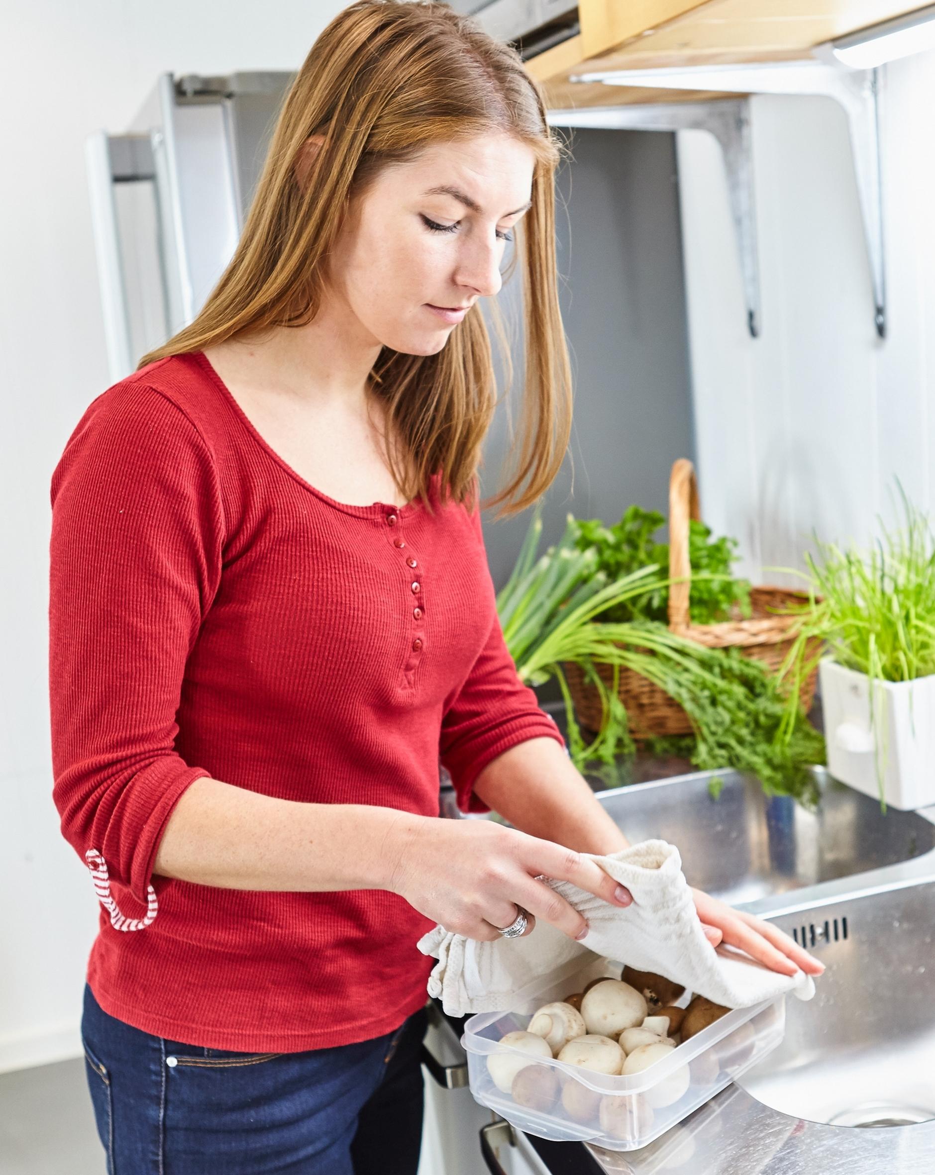 Pilze – nach dem Einkauf richtig aufbewahren