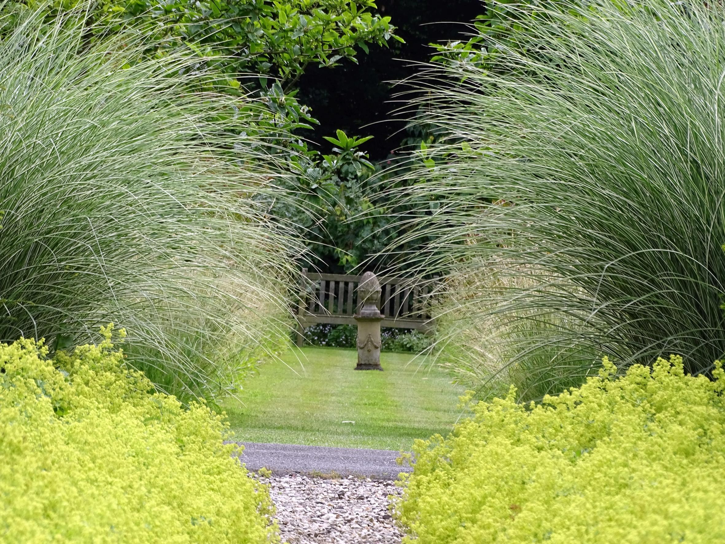 """Weitere Bilder zu """"Gartengestaltung mit Gräsern"""""""
