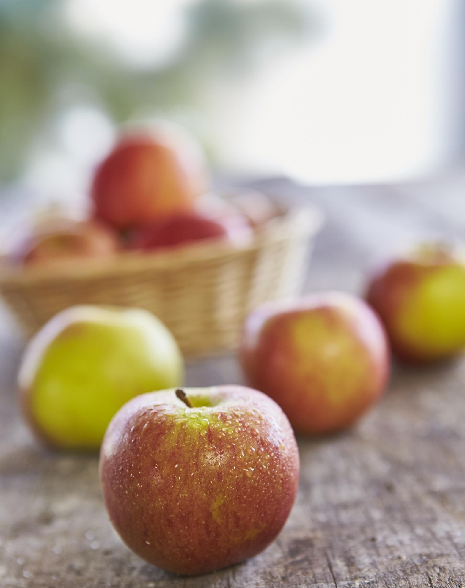 Hurra, die ersten deutschen Äpfel sind reif!