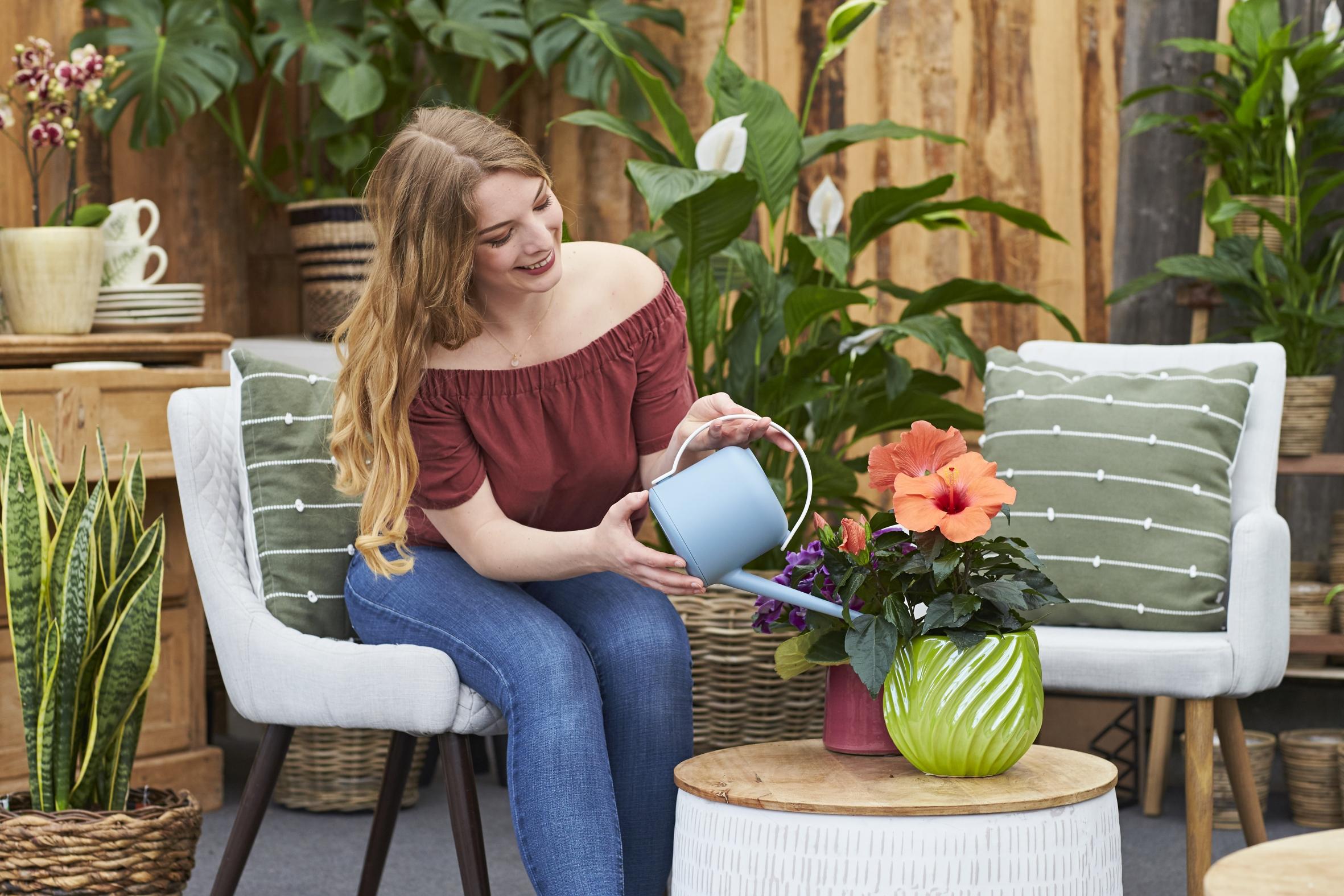 """Für noch mehr """"Natürlich schöne Augenblicke"""": Neue Internetseite hilft beim Finden der persönlichen Lieblingspflanze(n)"""