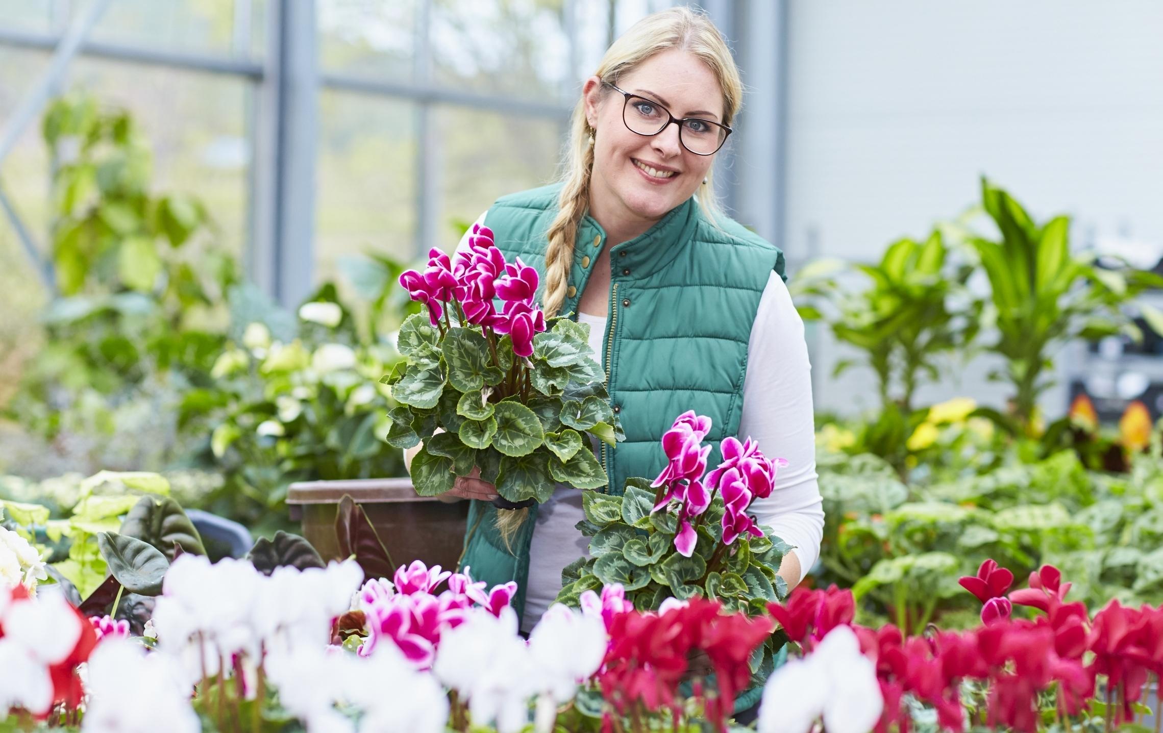 Für Garten und Balkon: Natürliche Winterschönheiten bieten besondere Augenblicke in der kalten Jahreszeit