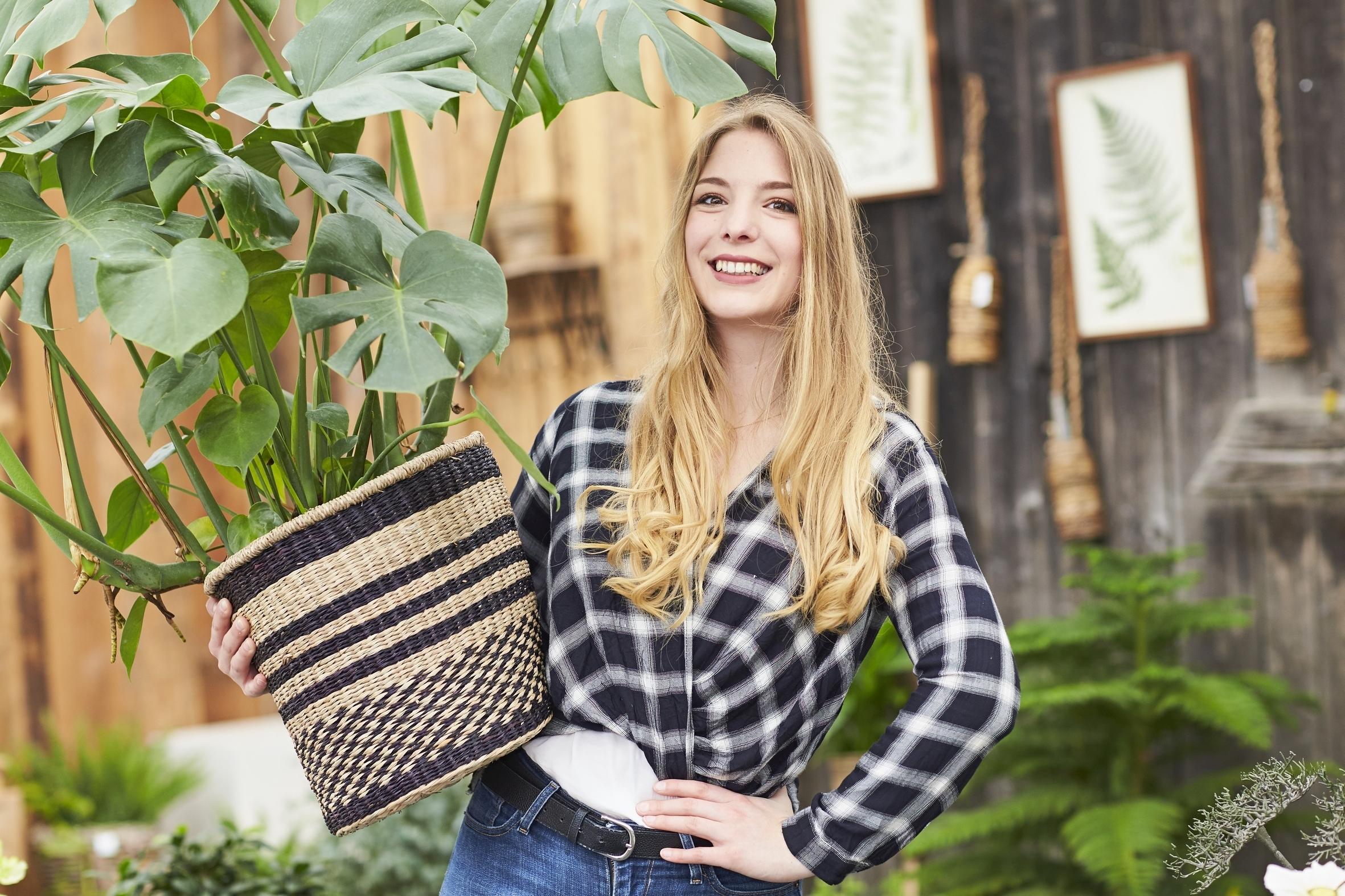Zimmerpflanzen in der kalten Jahreszeit sicher transportieren