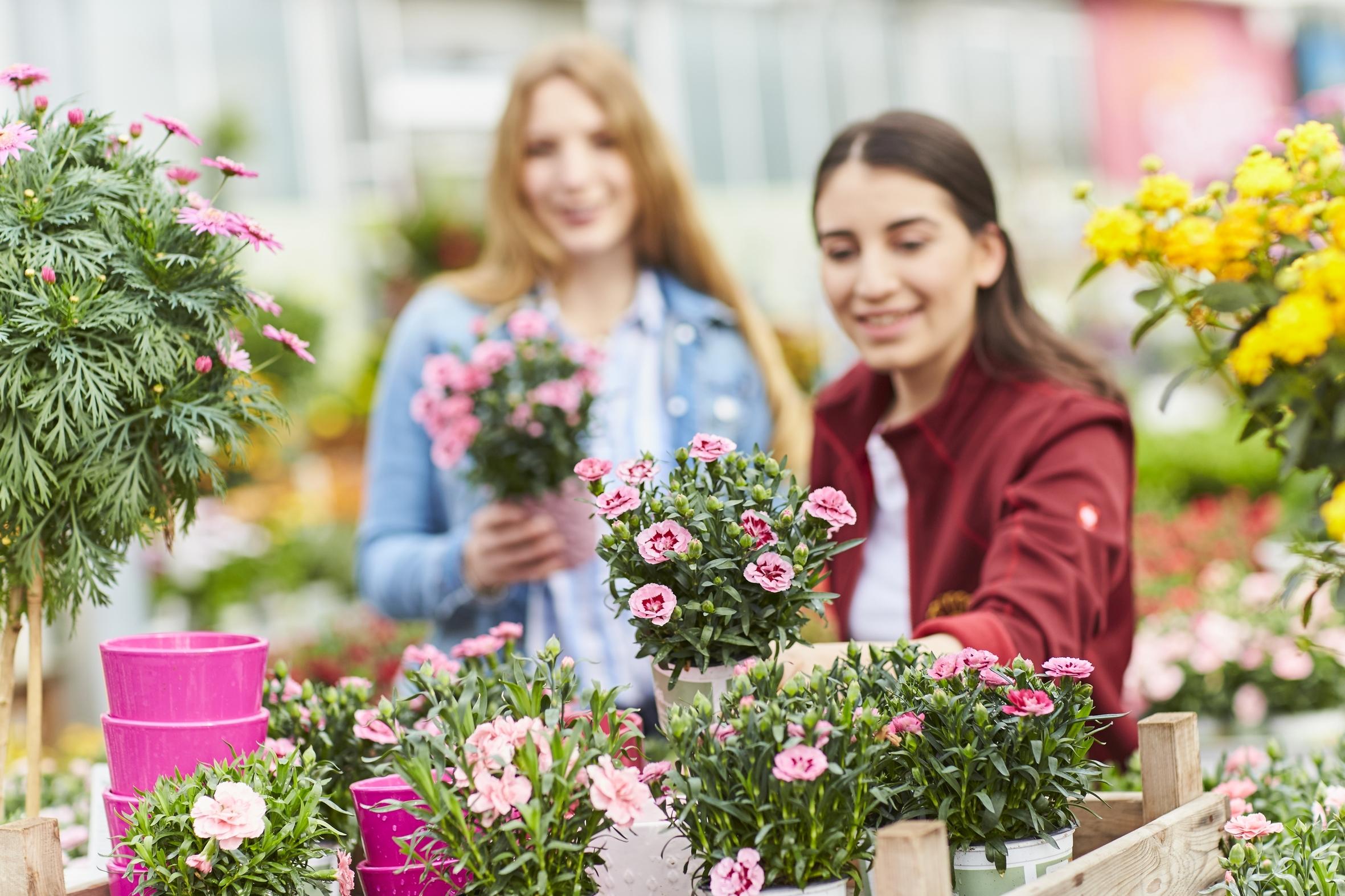 Gib' Futter: Wie du als Gärtner Insekten helfen kannst