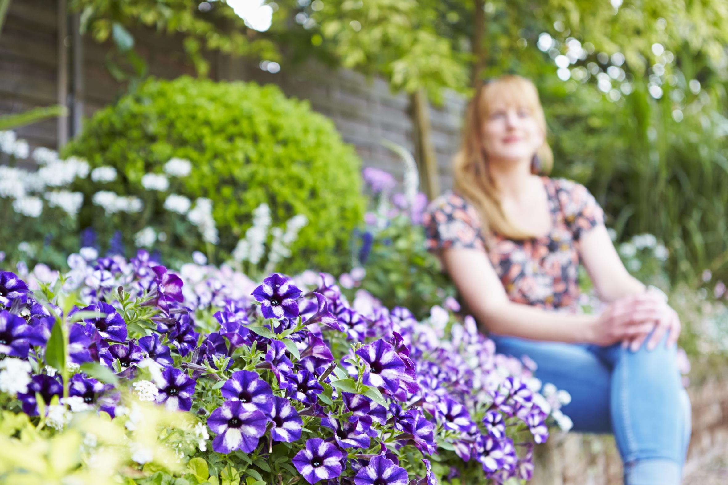 Jetzt der Seele und der Gesundheit Gutes tun mit Blumen und Pflanzen