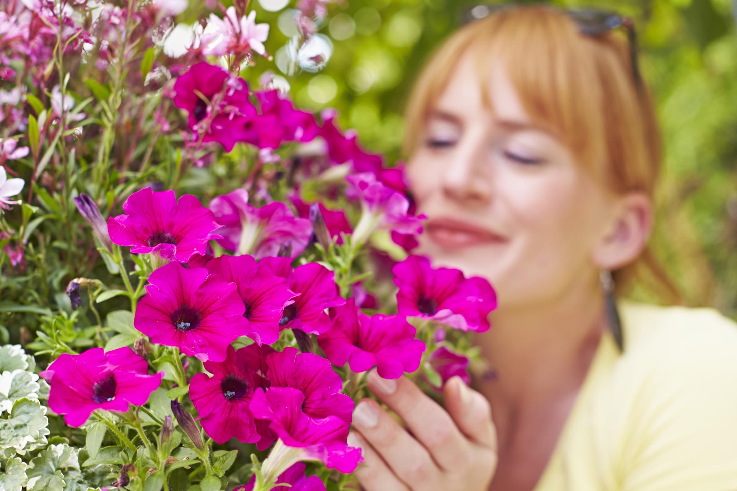 Zuversicht schenken: Blumen zum Muttertag