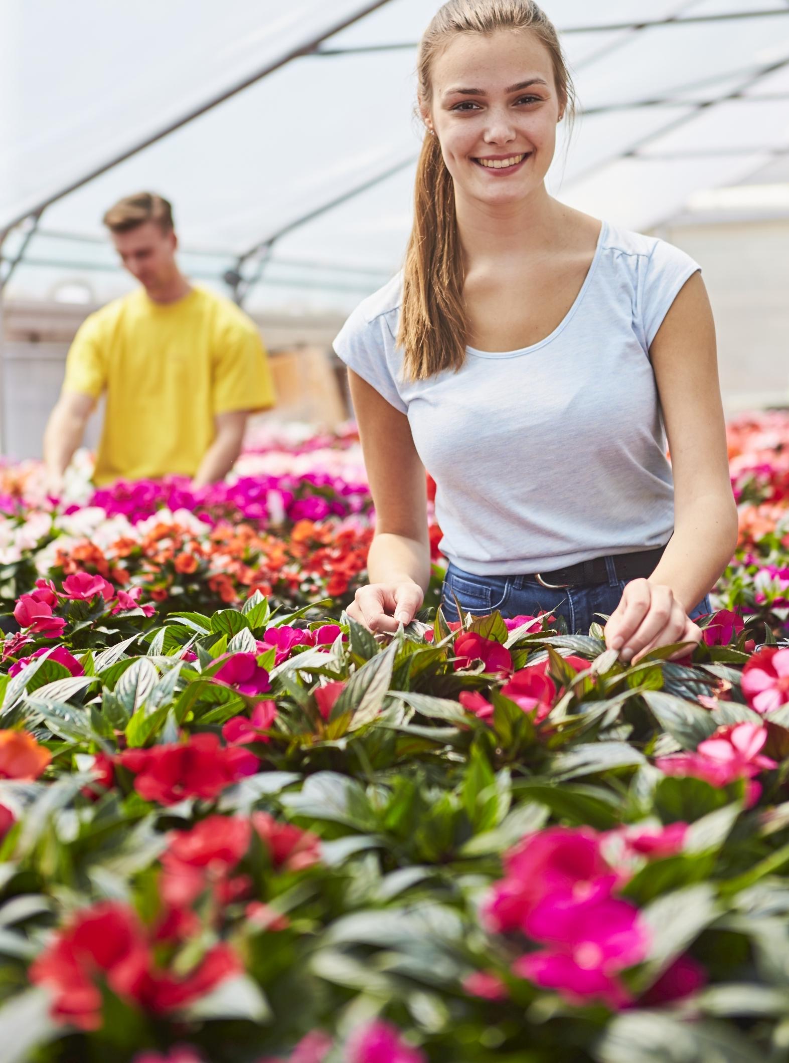 Machen Sie sich den Sommer richtig schön – mit tollen Pflanzen aus der Gärtnerei
