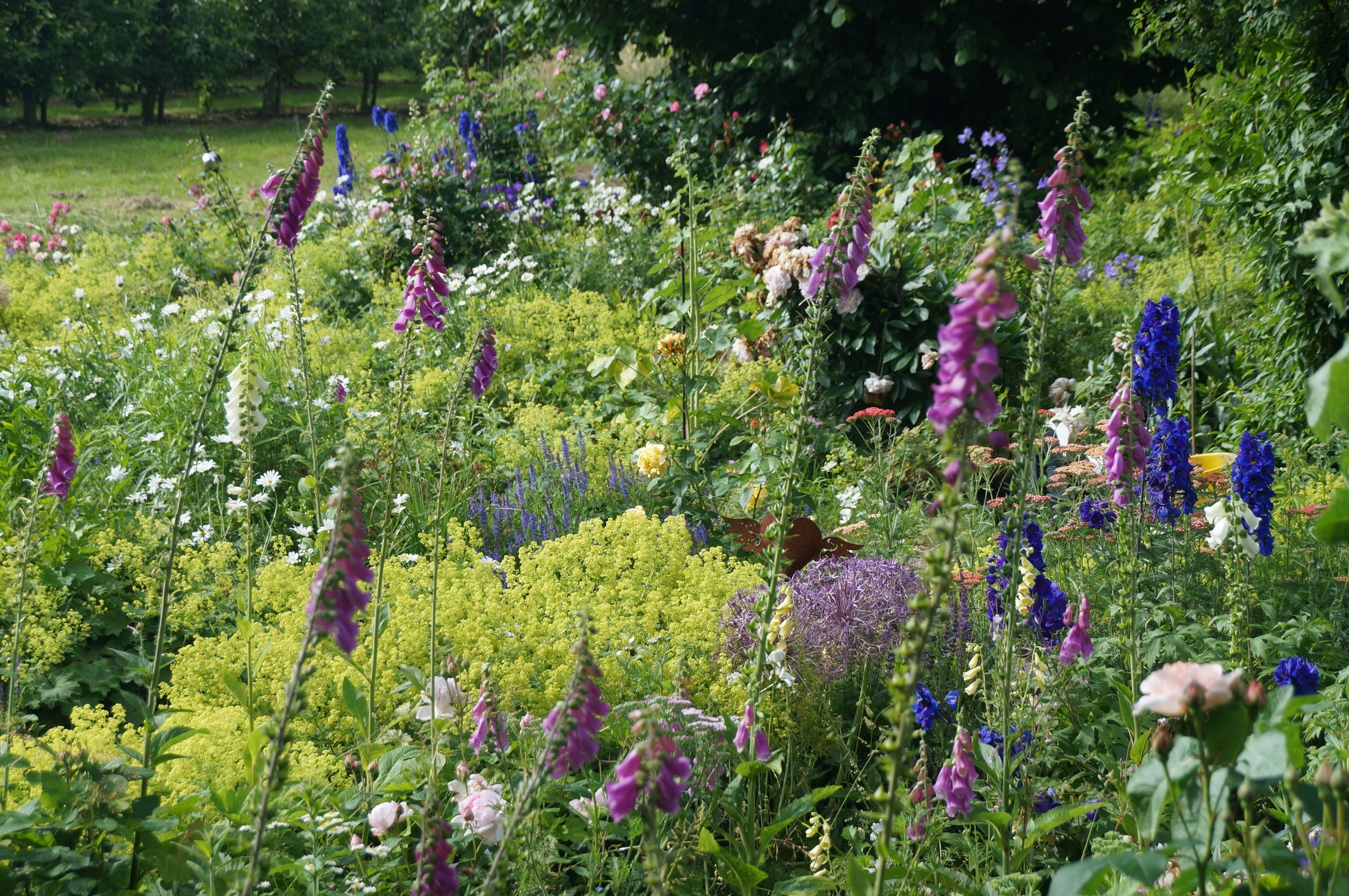 Jede Blüte zählt: Mit Pflanzen für Biodiversität sorgen