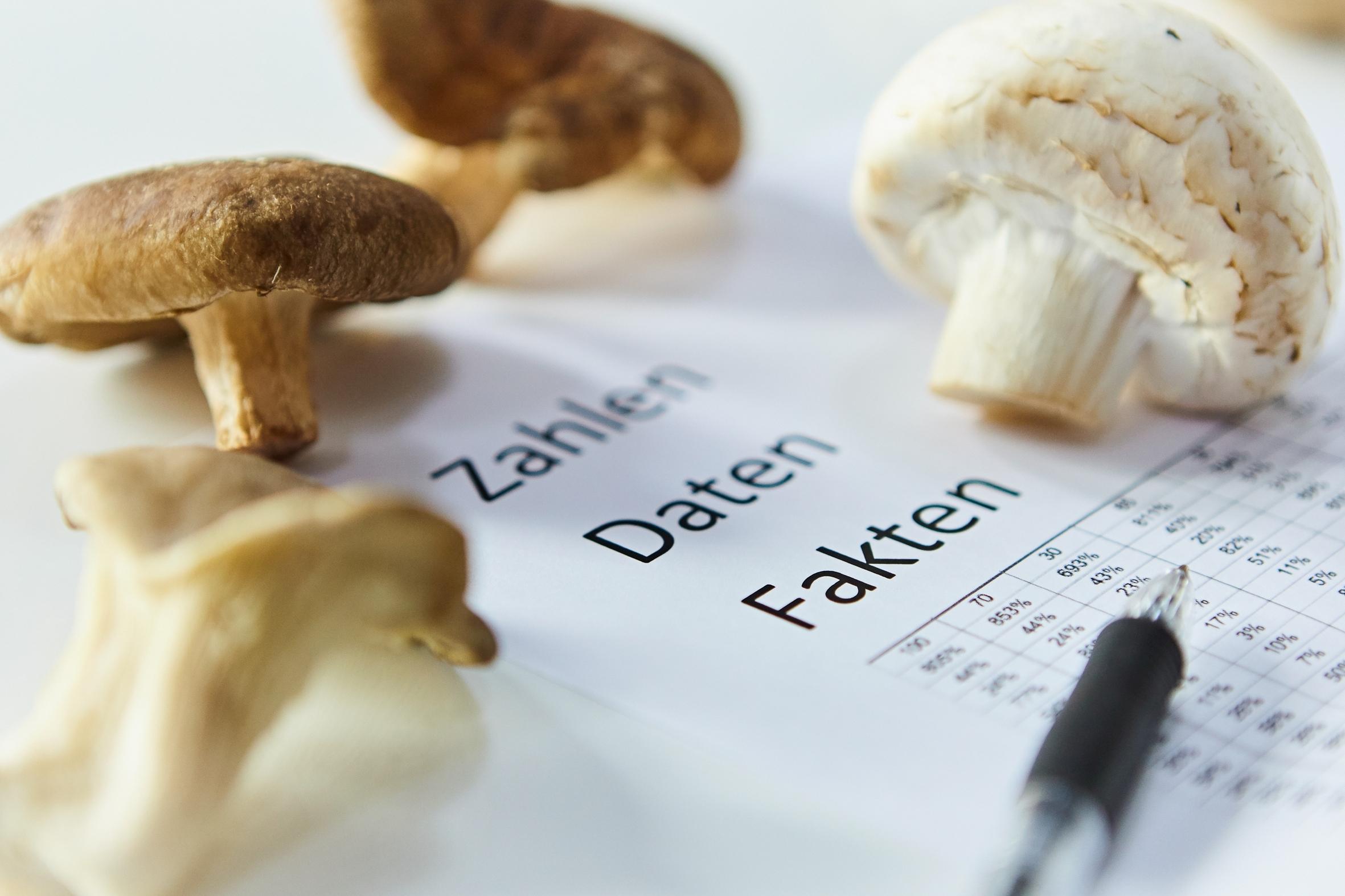 Pilze – gefragtes Lebensmittel nicht nur in Corona-Zeiten