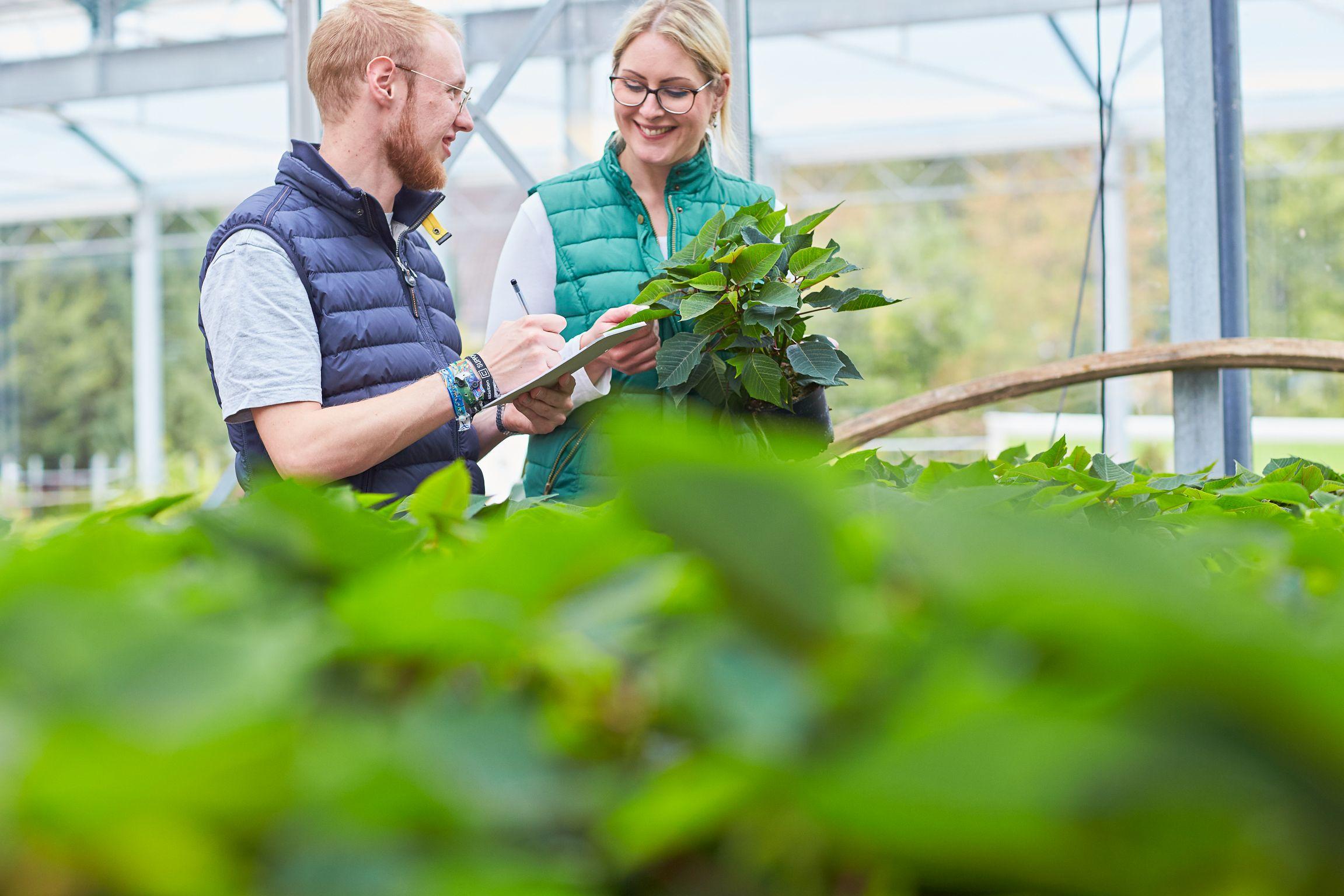 Traumberuf Gärtner*in: Der Weg zu deinem Ausbildungsplatz