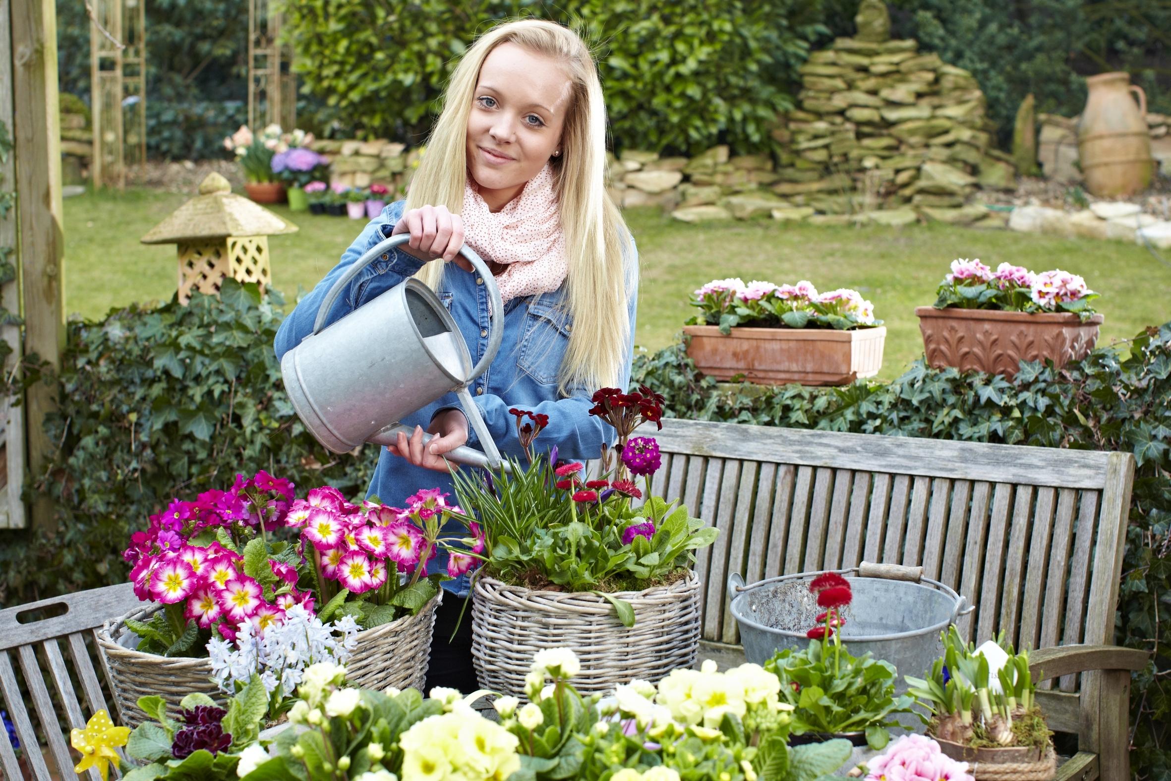 Das Leben im Freien erwacht: Blüten wecken Frühlingsgefühle
