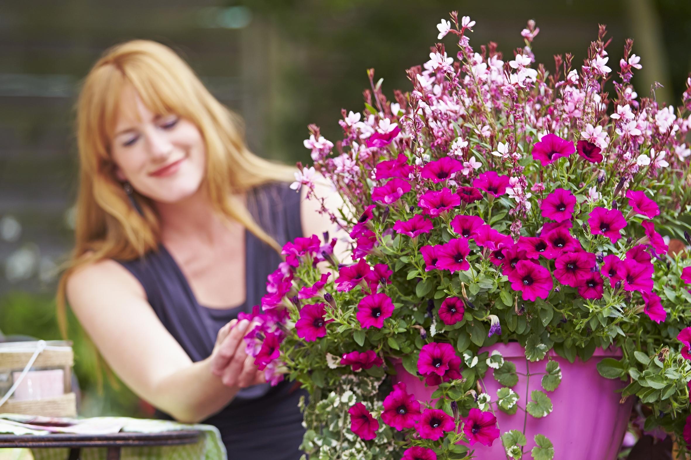 Auf gute Nachbarschaft: Mit Blumen und Pflanzen Freude bereiten